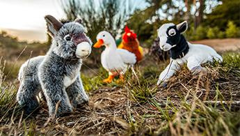 Haus- und Bauernhoftiere