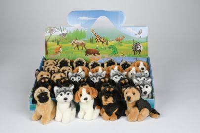 Husky,Beagle,Schäfer,Mops,Rottweiler