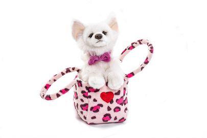 Chihuahua in der Tasche