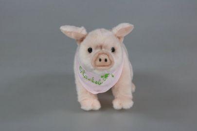 Schwein Glüscksbringer