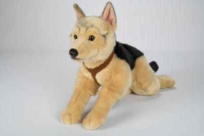 Deutscher Schäferhund mit Geschirr