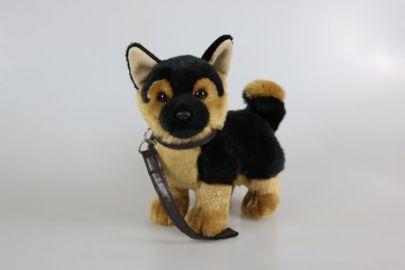 Schäferhund mit Leine