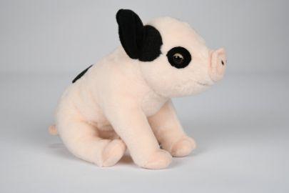 Schwein mit schwarzen Flecken