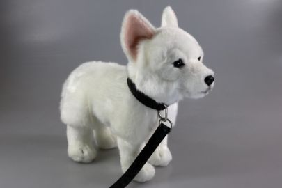 Weißer Schäferhund mit Leine