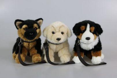 Schäferhund, Retriever, Berner  mit Stimme