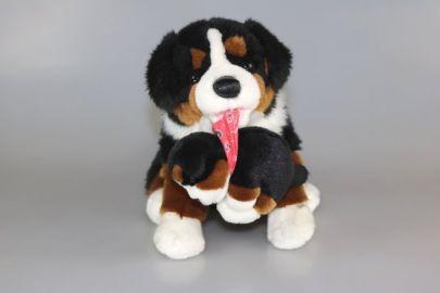 Berner Sennenhund (Magnet im Mund) mit Baby