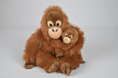 Oran Utan mit Baby